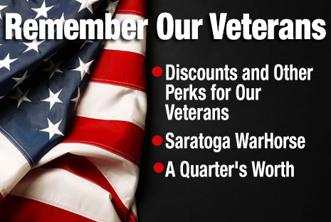 Veterans Day articles